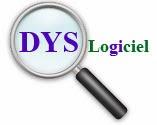 logo de dyslogiciel